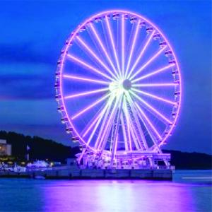 The Capital Wheel-01.jpg